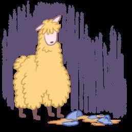 Oolong the Llama Tragedy