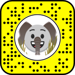 Snapchat WWF Elephant Augmented Reality Snapcode