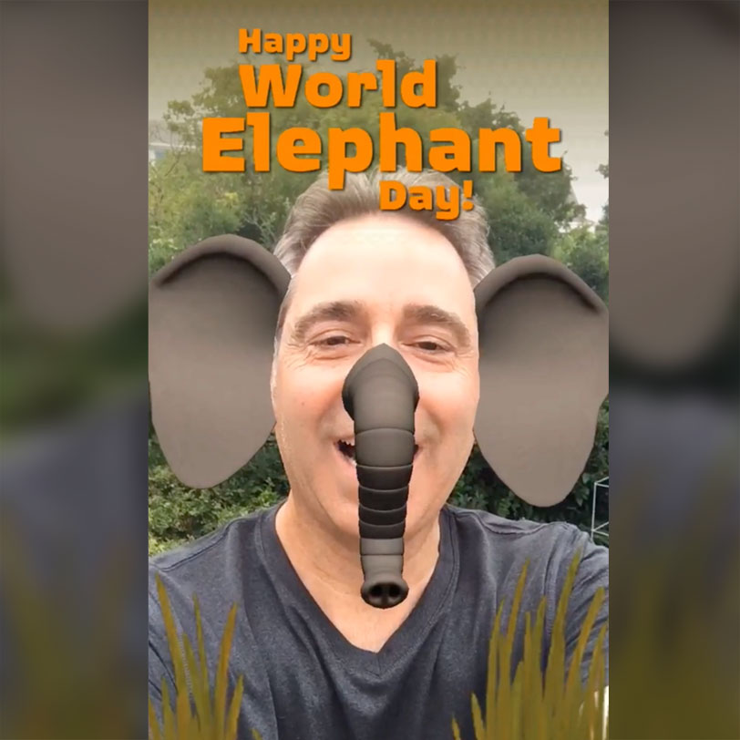 WWF Facebook Snapchat World Elephant Day Augmented Reality